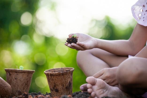 庭のリサイクルファイバーポットに若い苗を植える子供の手 Premium写真