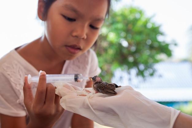 Вода и еда азиатской девушки ребенка подавая к птице воробья младенца с шприцем Premium Фотографии