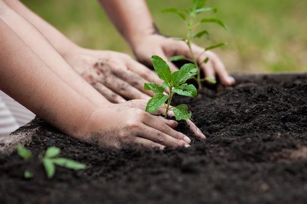 子供と親の手は、世界の概念を保存して一緒に黒い土壌に若い木を植える Premium写真