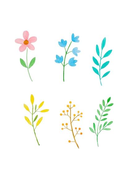 水彩イラストアートデザイン、春のカラフルな花と水彩で緑の葉のセット Premium写真