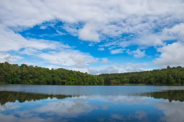 タイの美しい空の風景とジャングルの中で自然の貯水池 Premium写真