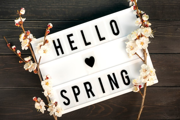 引用こんにちは春と花とアプリコットの木の小枝とライトボックス Premium写真