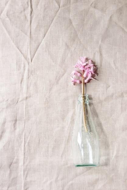 春のピンクのヒヤシンス Premium写真
