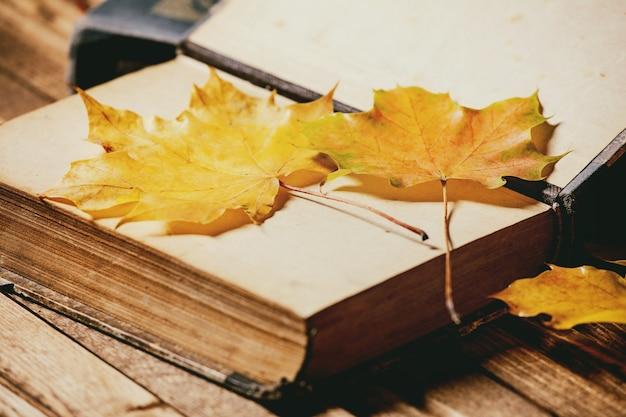 本と紅葉 Premium写真