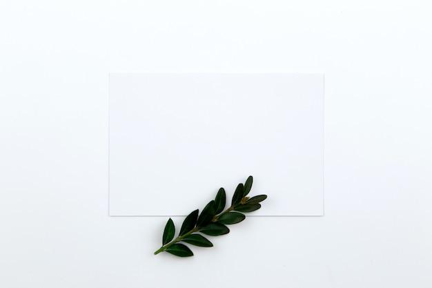 一枚の紙と葉と緑の小枝の上から見る。ヒーローイメージとコピースペース Premium写真