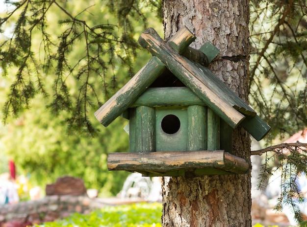木の上に緑色の鳥室、背景がぼやけています Premium写真