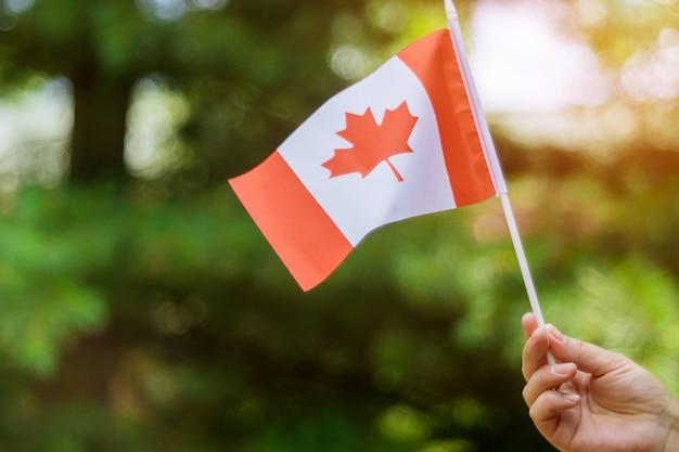 カナダの日の休日を祝うためにカナダの国旗を持っている女性の手 Premium写真