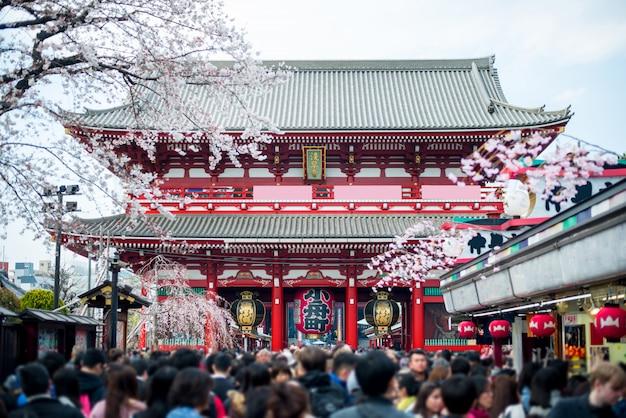 浅草寺の未定義の観光客。東京の浅草地区にある浅草寺。 Premium写真