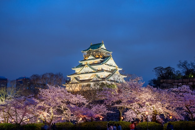春の桜の季節に大阪城で大阪 Premium写真