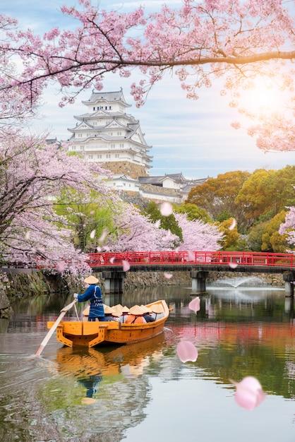 日本の大阪近郊の兵庫で春の桜が美しい姫路城。 Premium写真
