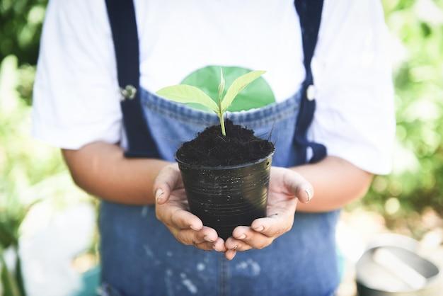 木を植える Premium写真