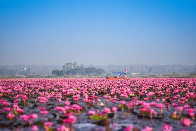 ウドンタニタイの朝のランドマークで赤い蓮ユリフィールドピンクの花水自然風景と湖川の観光船 Premium写真