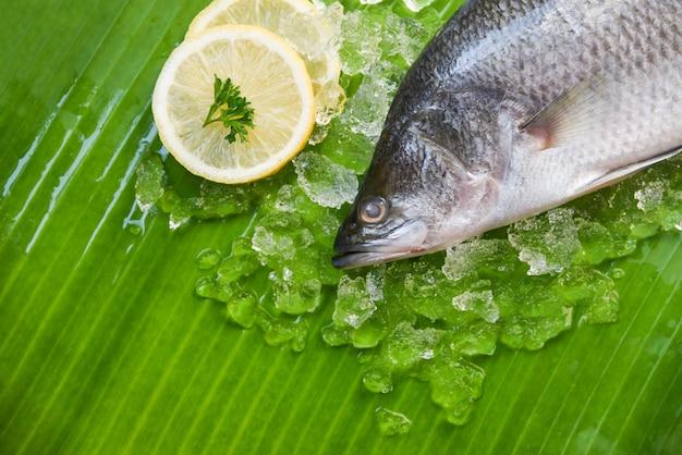 海鮮生スズキ魚プレート海のグルメ氷上 Premium写真