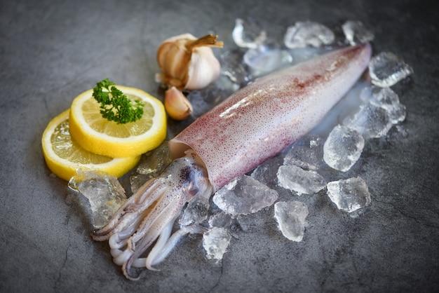 暗いプレートの背景にサラダスパイスレモンガーリックと氷の上に生のイカ Premium写真