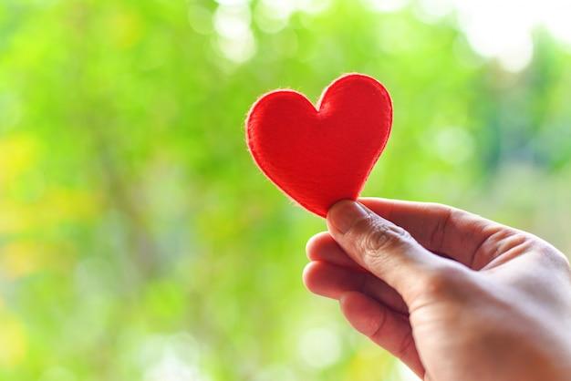Женщина держит красное сердце в руках на размытом фоне Premium Фотографии