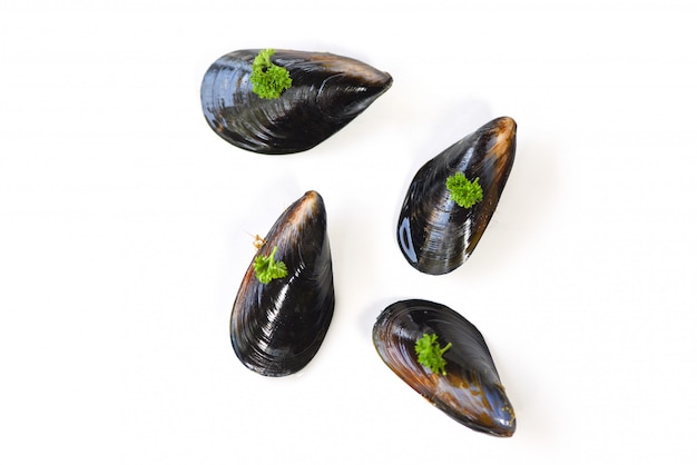 ムール貝の白い背景-パセリとムール貝の緑 Premium写真