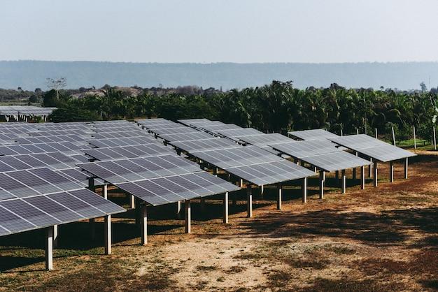 緑の木と太陽の光が反射するソーラーファームのソーラーパネル。太陽電池エネルギーまたは再生可能エネルギーの概念 Premium写真