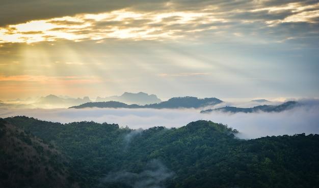 霧霧カバーの森と山の丘の上の美しい朝の日の出風景 Premium写真
