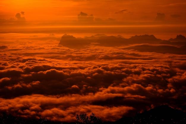 赤い空日の出霧霧覆われた森の風景山劇的な Premium写真