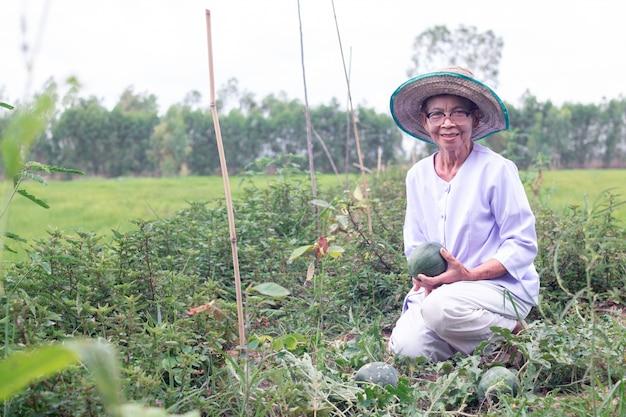 スイカを保持するいると笑顔のアジア農家高齢者女性の美しい肖像画 Premium写真