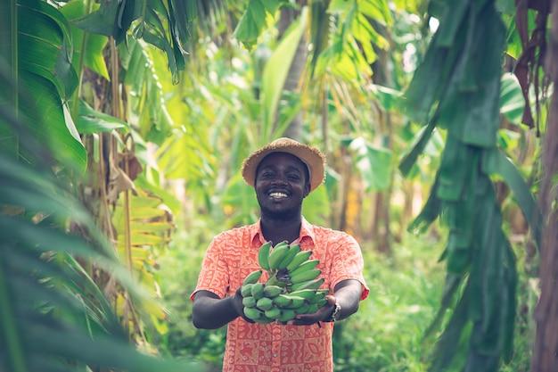 Африканский фермер держит банан на органической ферме Premium Фотографии