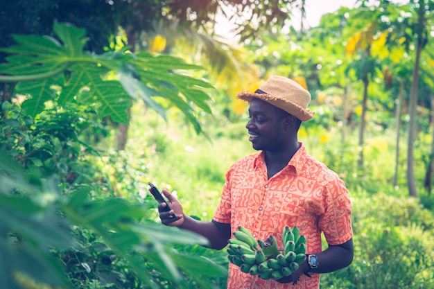 Африканский фермер держит банан и смартфон на органической ферме Premium Фотографии