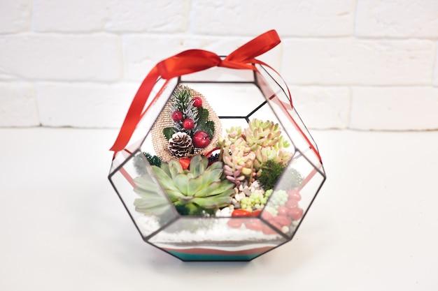 Флорариум, композиция из суккулентов, камень, песок и стекло, элемент интерьера, домашний декор, рождество, Premium Фотографии
