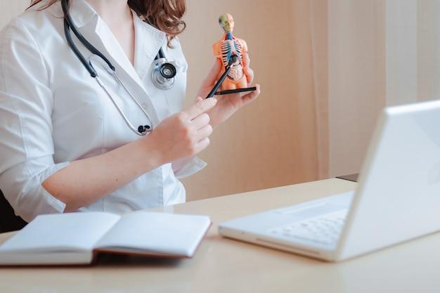 人間の臓器の解剖学的モデルを持っている医者の手 Premium写真