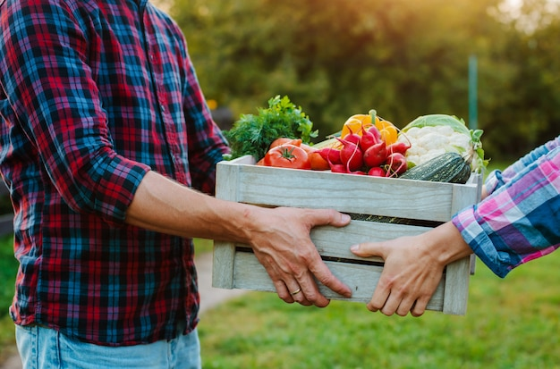 Деревянная коробка с овощами фермы в руках мужчин и женщин, крупным планом. Premium Фотографии