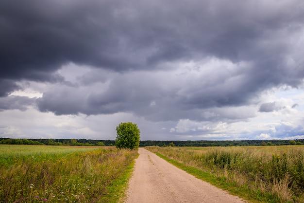 Летний полевой пейзаж. русские просторы. перед штормом. темное дождливое небо. Premium Фотографии