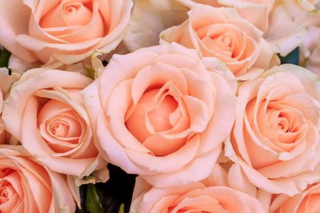 Букет из нежных роз. фон из цветочных роз. красивые цветы. подарок к празднику. свежие цветы Premium Фотографии