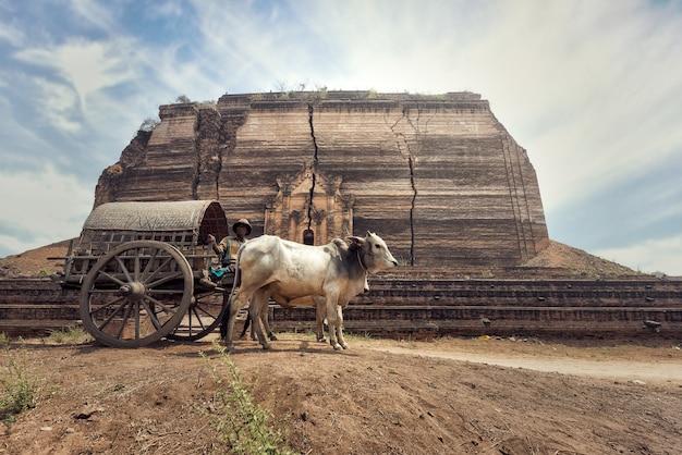 Бирманский сельский человек за рулем деревянной тележки с традиционной деревенской жизнью в сельской местности бирмы Premium Фотографии