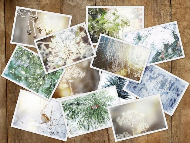冬の写真のコラージュ。セレクティブフォーカス自然の冬 Premium写真