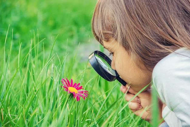 子供は虫眼鏡で見ています。増加する。セレクティブフォーカス Premium写真
