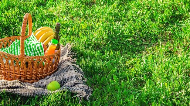 芝生の上でピクニックをすることを検討しました。セレクティブフォーカス Premium写真