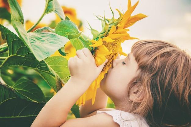 ひまわり畑の子供は小さな農家です。セレクティブフォーカス Premium写真