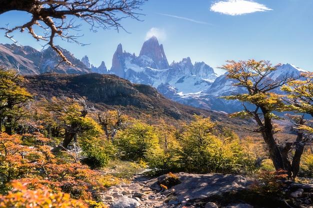 ロスグラシアレス国立公園、サンタクルス州、パタゴニア、アルゼンチン、フィッツロイ山。 Premium写真