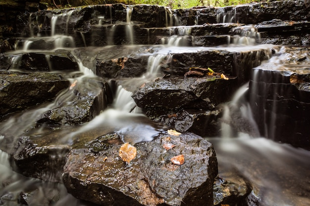 小さな川の上の小さな滝 Premium写真