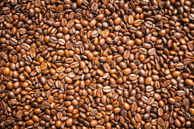 茶色のコーヒー豆と種 無料写真