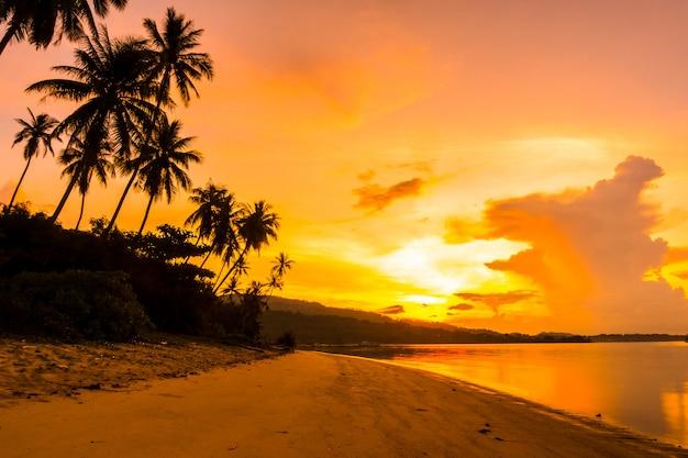 日の出時間にトロピカルなココナッツのヤシの木がある美しい屋外ビューの海とビーチ 無料写真
