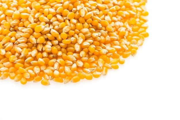 Семя початка кукурузы Бесплатные Фотографии
