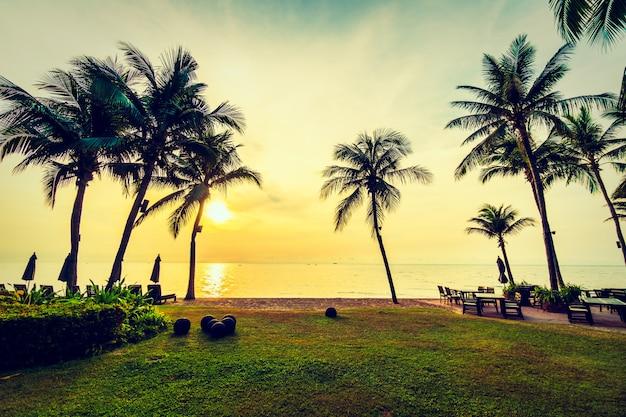 ビーチと海の美しいココヤシの木 無料写真
