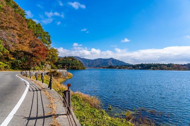 河口湖周辺の美しい風景道路脇 無料写真