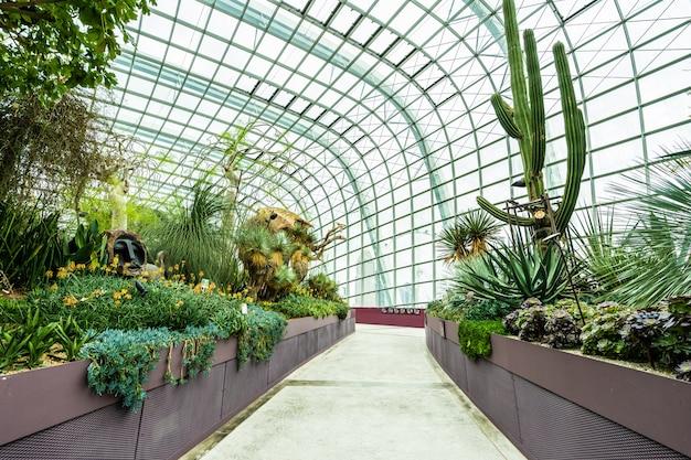 フラワードームガーデンと旅行用温室林 無料写真