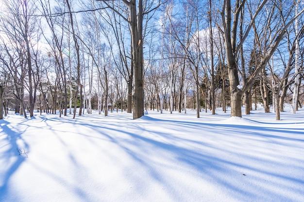 Красивый пейзаж с деревом в снежный зимний сезон Бесплатные Фотографии