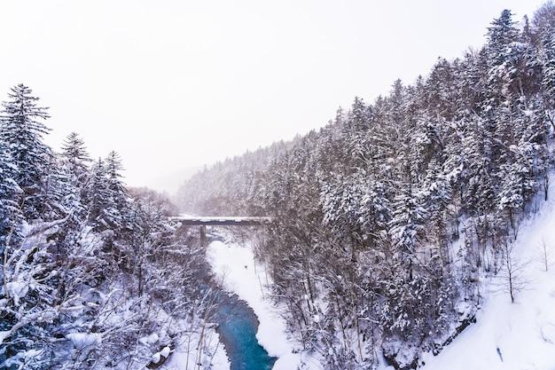 Красивый открытый ландшафт с водопадом и мостом в зимний сезон Бесплатные Фотографии