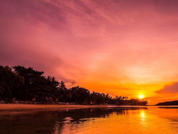 美しい熱帯のビーチの海と日の出時にココヤシの木と海 無料写真