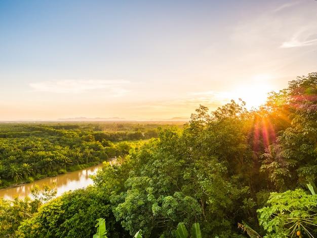 夕暮れの緑の森の風景と美しい空撮 無料写真