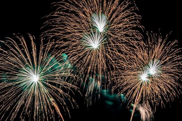 Красивый красочный фейерверк ночью для празднования Бесплатные Фотографии