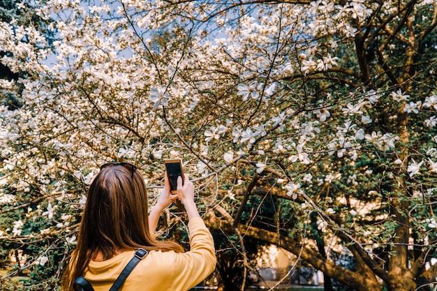 女の子は、スマートフォンのカメラでマグニロアの花の写真になります。ソーシャルメディア Premium写真